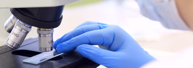 mãos, luvas, microscópio, laboratório